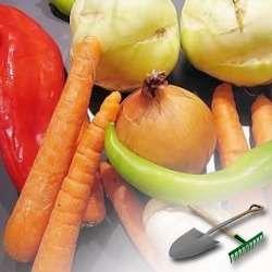 Как выращивать овощи в зимнее время года?