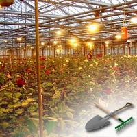 выращивание овощей зимой