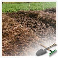 задернение почвы