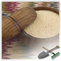 Амарант: лечебные свойства, рецепты старины
