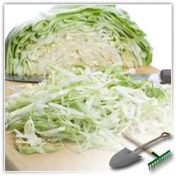 Каким образом лучше  лучше всего квасить капусту?