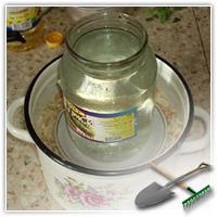 как правильно квасить капусту в домашних условиях