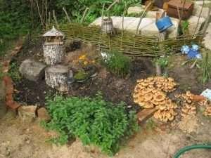 выращивание опят на даче